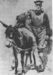 samson and his donkey