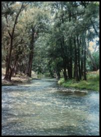 wiradjuri country cudgeegong river